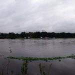Rosengarten-Pano
