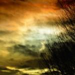 Bildnummer: 00070 - partielle Sonnenfinsternis 2011