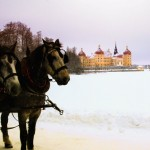 Pferdeschlitten vor Schloß Moritzburg