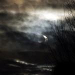 Sonnenfinsternis 2011 Bild-4
