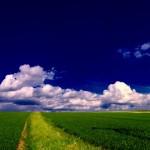 Bildnummer 00078 - Frühlingswetter